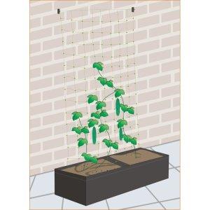 Plantepose