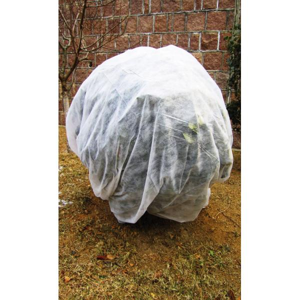 Frost fleece dug 2.4x10m