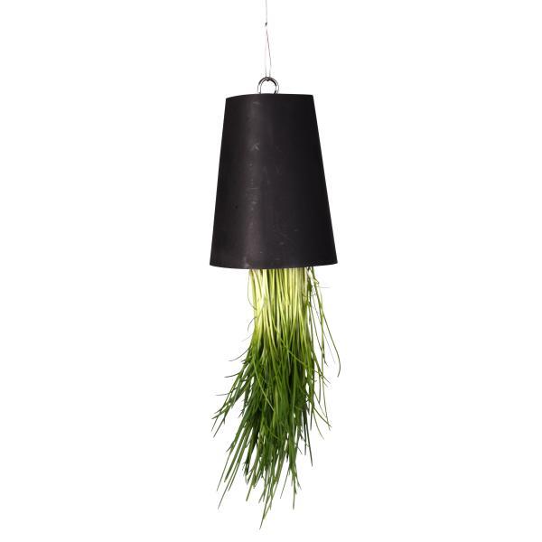 h ngende potteplante bl kaufen sie h ngende potteplante bl auf. Black Bedroom Furniture Sets. Home Design Ideas