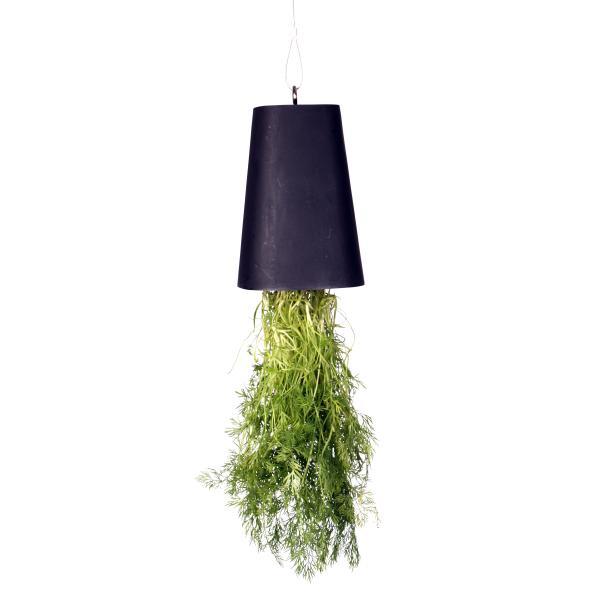 Hængende potteplante - lyserød, køb din nye Hængende potteplante ...